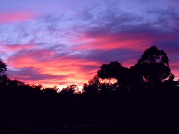Barossa sunrise at HVH